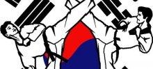 Han's Tae Kwon DO Academy