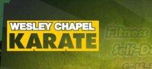 Wesley Chapel Karate/MMA