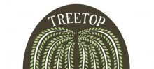Treetop Yoga
