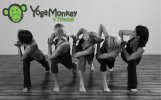 Yoga Monkey & Fitness