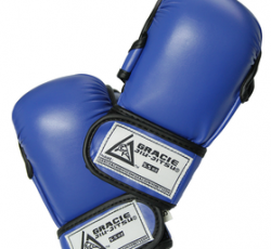 Training Gear:  Official Academy 5.5oz. Sparring Gloves