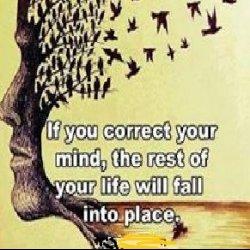 Meditation & Daily Life