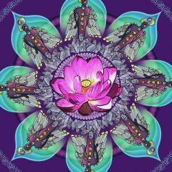 Meditation Healing Plus
