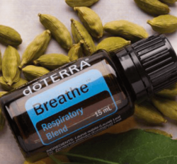 Breathe Essential Oil Blend, 15mL