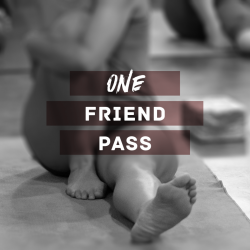 One FRIEND Pass
