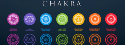 Chakra Workshop - The Energy of Movement