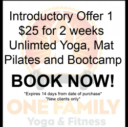 Introductory Offer 2 weeks for $25
