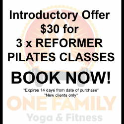 Reformer Intro Pass 3 classes for $30