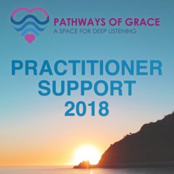 Practitioner Support 2018
