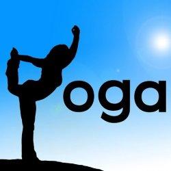 Private Yoga, 1 Person (1 Hour)