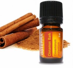 Cinnamon Bark Essential Oil, 5mL