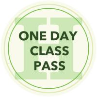Day CLASS PASS