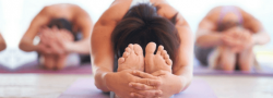 Understanding and Practicing Hatha Yoga: Sound, breath, posture