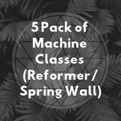 5 Pack of Machine Classes (Reformer/Spring Wall)