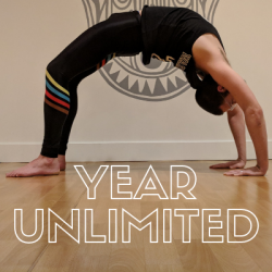 1 Year Unlimited