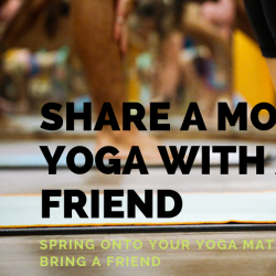 Spring onto your Mat with a Friend