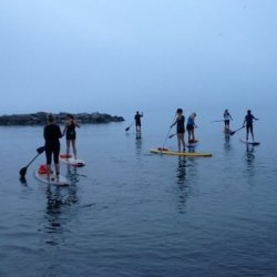 SUP Boarding - Social Paddle, 90min
