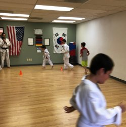 Beginner Trial Course