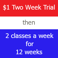 $1  Two Week Trial then 2 classes a week for 12 weeks