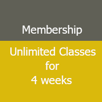 Unlimited Classes for 4 weeks