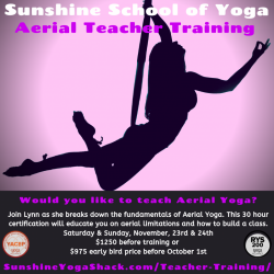 Aerial Teacher Training Payment Plan