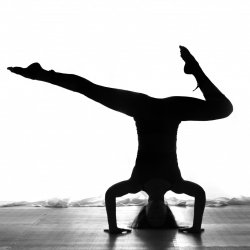 90 Days of Unlimited Yoga for $280