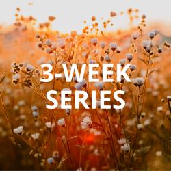 3-Week Series: Community