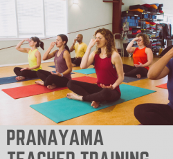 Pranayama Yoga teacher training - application fee