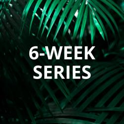 6-Week Series: Sustainer