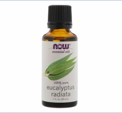 Now Foods, Essential Oils, Eucalyptus Radiata (30 ml)