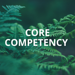 Core Competency Training: Community