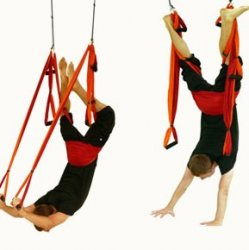Mat Yoga and Trapeze Unlimited