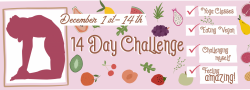 14 Day Challenge