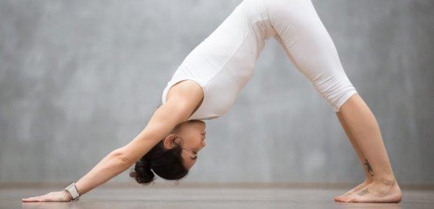 Yoga Studio in North York, ON