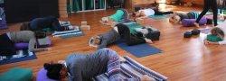 Yin Yoga Certification