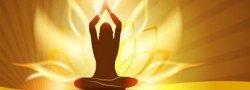Ayurveda Foundations & Ayurvedic Yoga