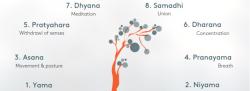 Walking the Eight Limb Path of Yoga