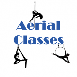 Single Aerial Pole/Hoop/Silks Class or Workshop!