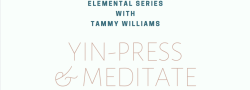 VIN - YIN-PRESS & MEDITATE FEATURE CLASS (WATER ELEMENT) WITH TAMMY WILLIAMS