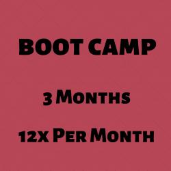 BOOT CAMP l 3 Mo l 12x Per Mo