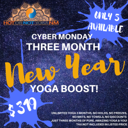 Three Month New Year Boost!