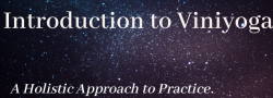 Intro to Viniyoga - A Holistic Approach to Practice