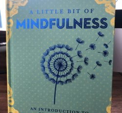 A little bit of mindfulness