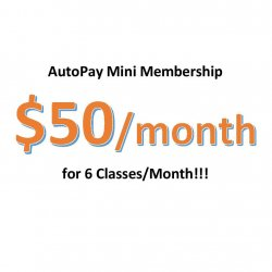 Autopay Mini Membership - Charge on 1st