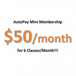Autopay Mini Membership - Charge on 15th