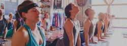 200 Hour Yoga Teacher Training with Hidden Dragon Yoga