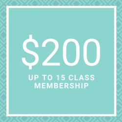 The Body Mason Membership - 15 CLASSES MONTHLY