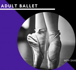 Online Class - Adult Ballet