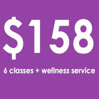 6X MONTHLY + wellness service
