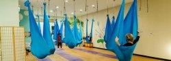 Beginner's Aerial Yoga Workshop